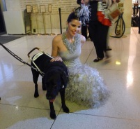 "Opera dog always gets the ladies, in this case Linda Taylor: Opening night of ""I Due Foscari"" at LA Opera (photo by S. Williams for LA Opera)"