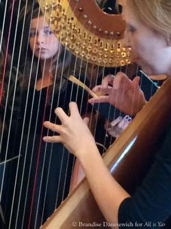 A view through the harp
